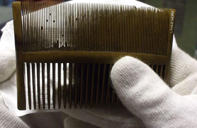 Чем вычесывать гнид с длинных волос в домашних условиях 36